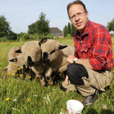 Marc en zijn schapen